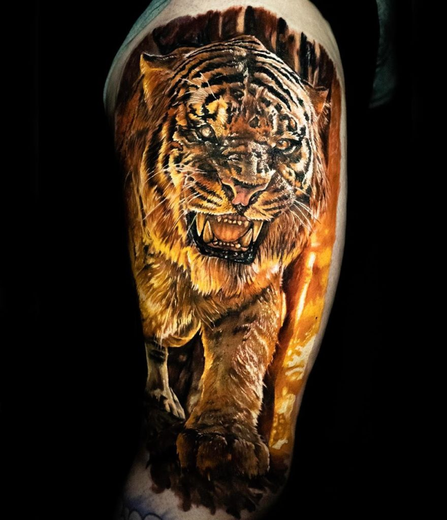 Tatuaż biały kolorowy tygrys wognie naramieniu męski, kobiecy
